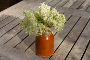 Elderflower and White Chocolate Shortbread - elderflowers
