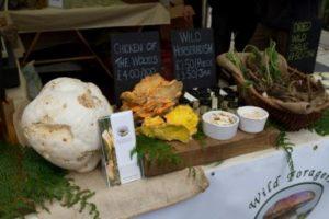 petersfield food festival 2012 - wild mushrooms