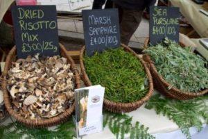 petersfield food festival 2012 - wild foods stall