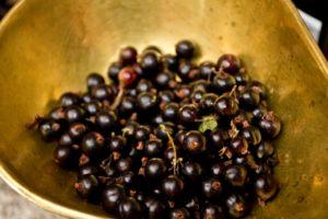 Blackcurrant Pancakes - blackcurrants