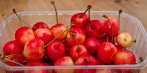 Heritage Cherry Tart - cherries from market