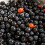 sloes, rosehips and blackberries for hedgerow gin