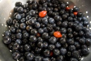Washing sloes and hedgerow berries for gin