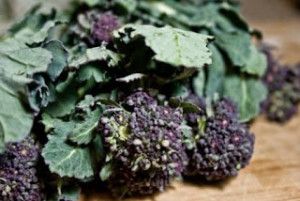 Local purple sprouting broccoli
