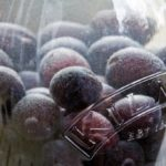 Damson Gin - steeping