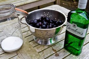 Damson Gin - ingredients