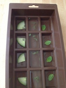 gin and tonic jelly mould