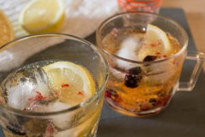 Elderflower, Lemon and Blackcurrant Gin and Tonic
