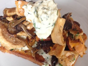 Mushrooms on toast at Baravin Aberystwyth