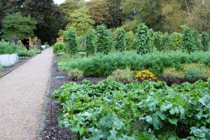 Le Manoir vegetable garden