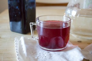 Frozen Blackcurrant Cordial