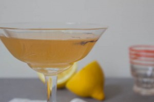 Earl Grey Gin Gimlet - All That I'm Eating (3 of 3)