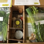 Riverford Recipe Box Review