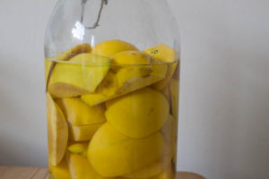 Making Quince Gin