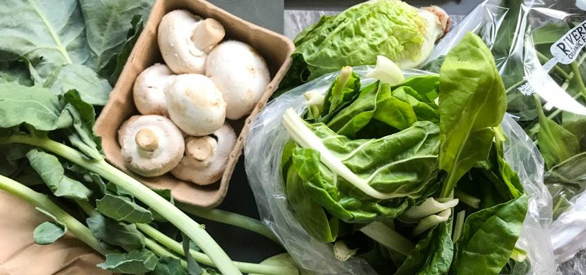 Vegetable Box Recipes