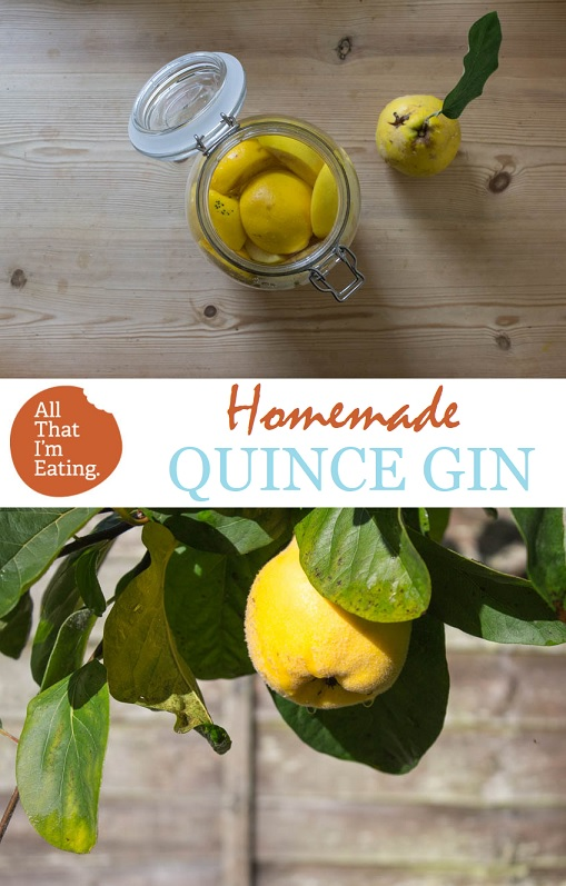 Homemade Quince Gin